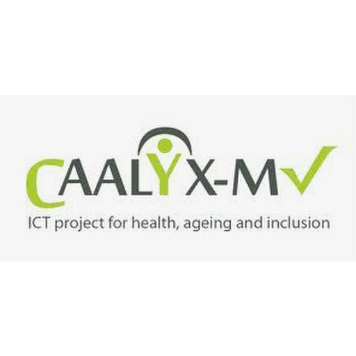 CIP-ICT-PSP-2010-4, 250577 CAALIX-MW